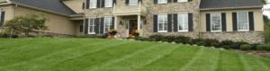 lawn care maintenance services