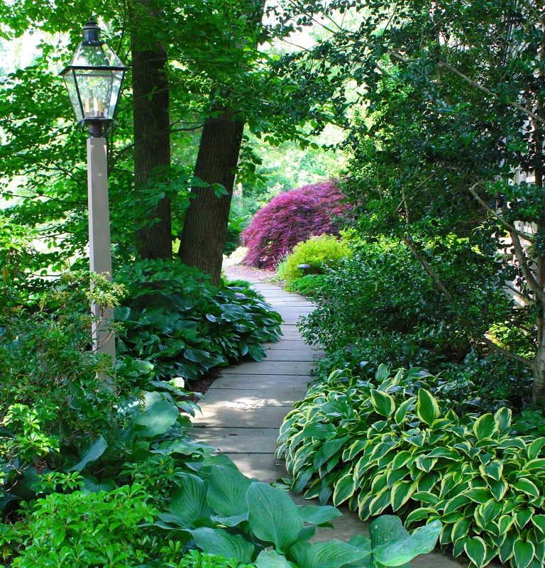 Custom Walkways path through lush plants and trees